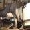 Produção do leite no Tocantins será discutida em seminário on-line aberto ao público
